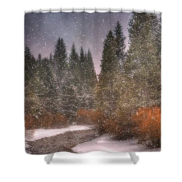 Colours Of Winter Shower Curtain