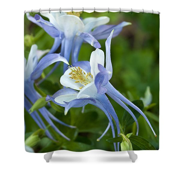 Columbine-2 Shower Curtain