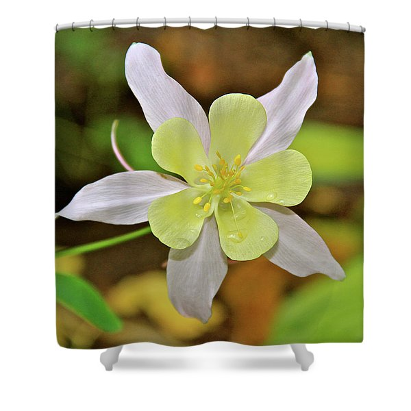 Columbine Charlie's Garden Shower Curtain