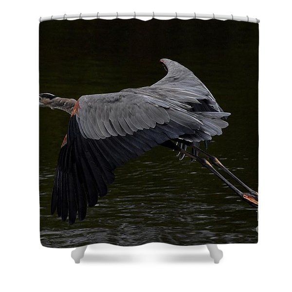 Coming In Shower Curtain