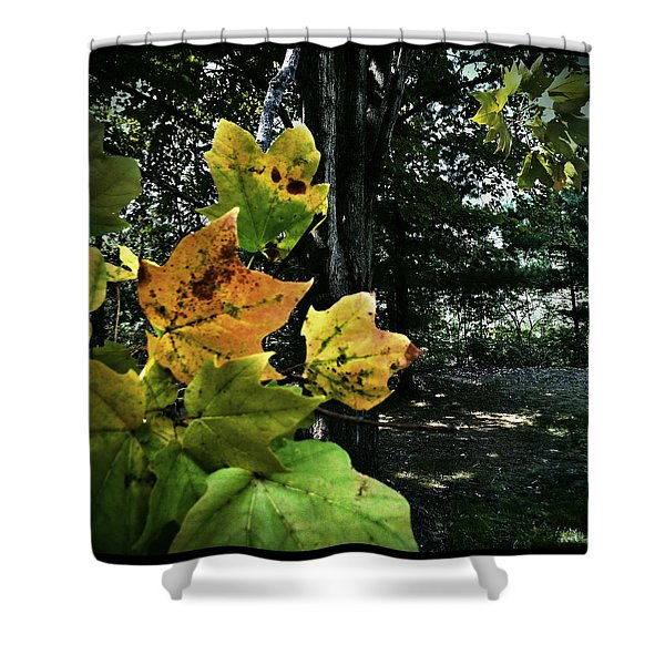 Coming Of Fall Shower Curtain