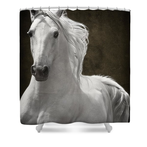 Coming Your Way Shower Curtain