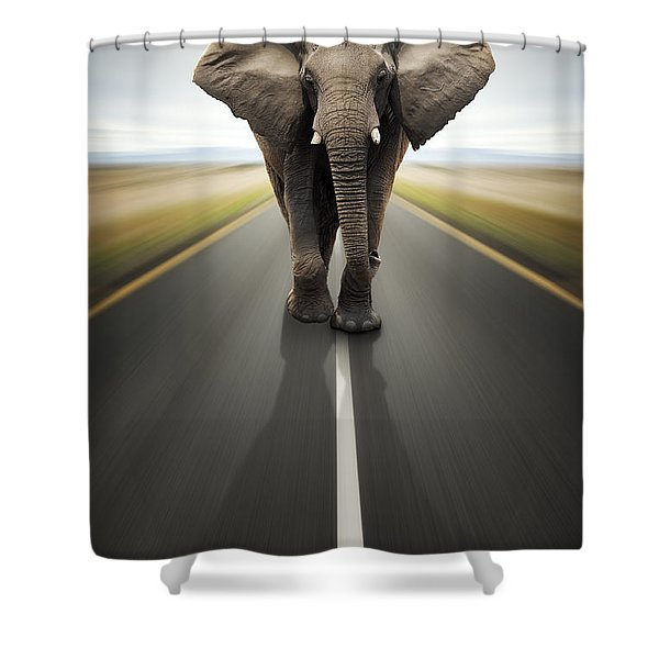 Heavy Duty Transport / Travel By Road Shower Curtain