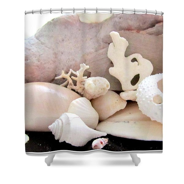 Conch And Tropical Shells  Meddley Shower Curtain