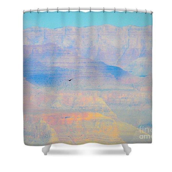 Condor Series A Shower Curtain