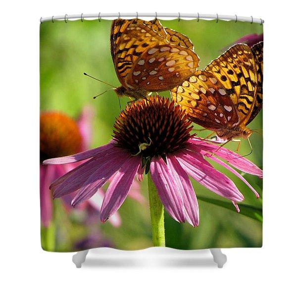 Coneflower Butterflies Shower Curtain