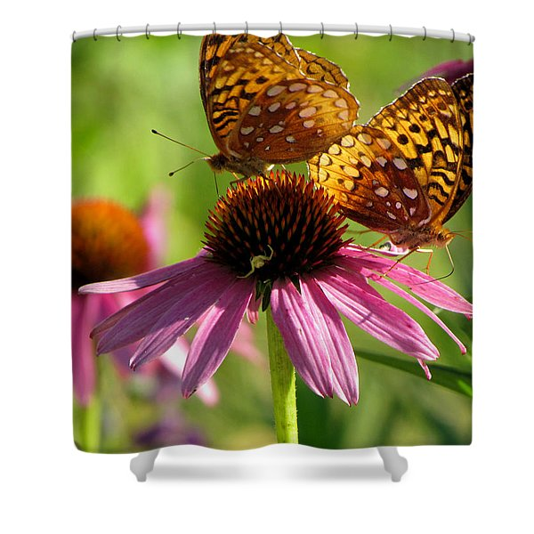 Coneflower Butterflies Shower Curtain