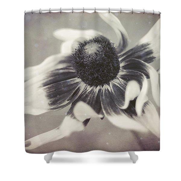 Coneflower In Monochrome Shower Curtain