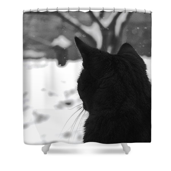 Contemplating Winter Shower Curtain