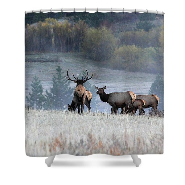 Cool Misty Morning Shower Curtain