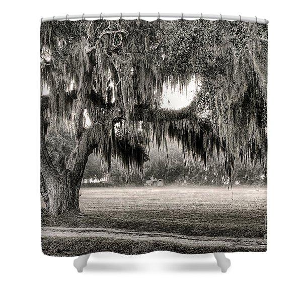 Coosaw - Split Oak Shower Curtain
