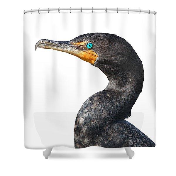 Cormorant Shower Curtain