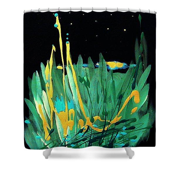 Cosmic Island Shower Curtain