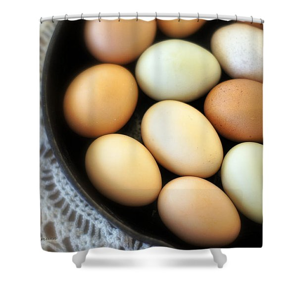 Country Egg Skillet Shower Curtain