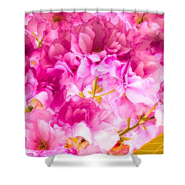 Crabapple Impressions 2 Shower Curtain