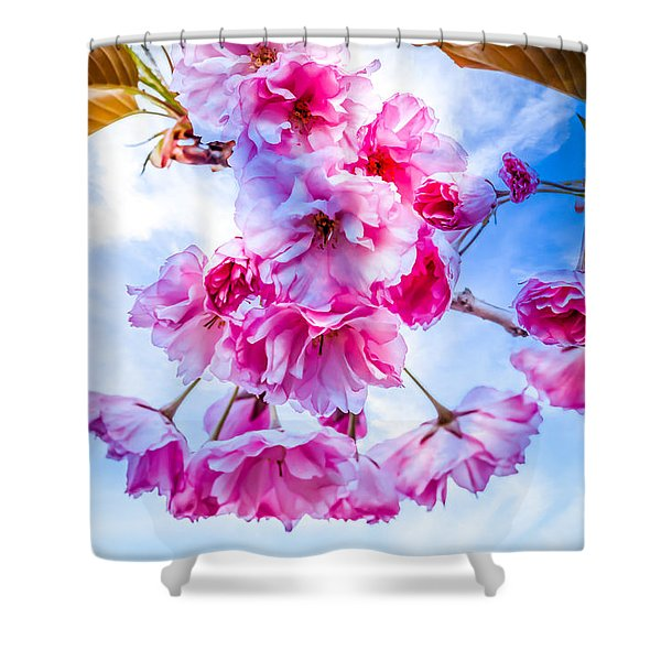 Crabapple Impressions Shower Curtain