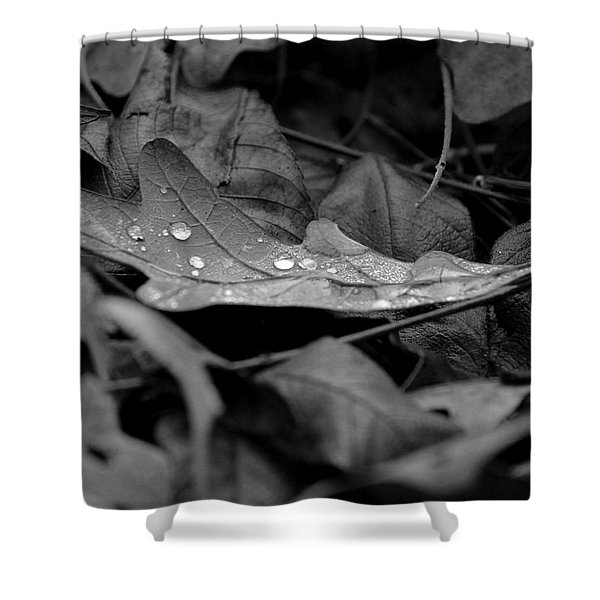 Cradle Shower Curtain