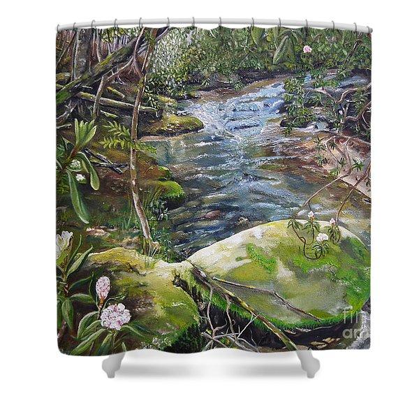 Creek -  Beyond The Rock - Mountaintown Creek  Shower Curtain