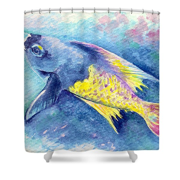 Creole Wrasse Shower Curtain