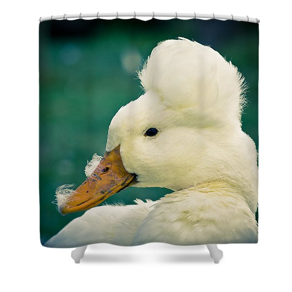 Crested Duck Shower Curtain