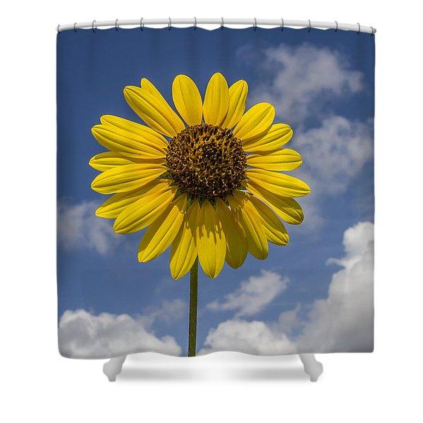 Cucumberleaf Sunflower Shower Curtain