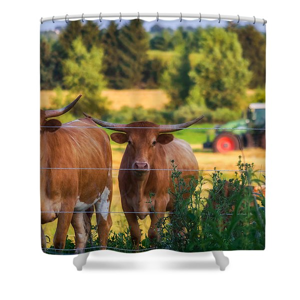 Curiousity Shower Curtain