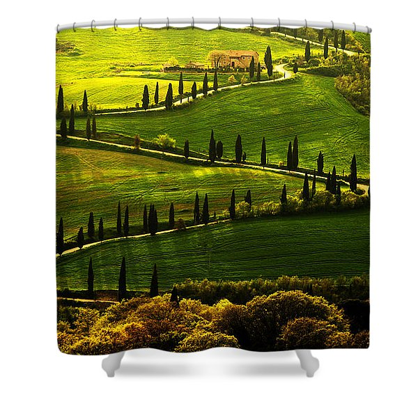 Shower Curtain featuring the photograph Cypresses Alley by Jaroslaw Blaminsky