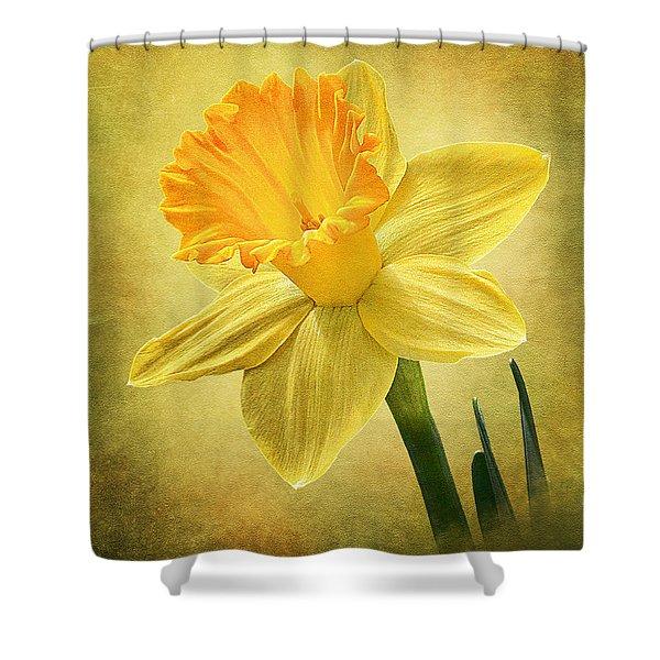 Daffodil Shower Curtain