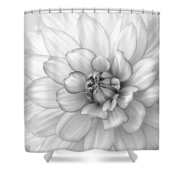 Dahlia Flower Black And White Shower Curtain