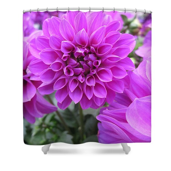Dahlia In Pink Shower Curtain