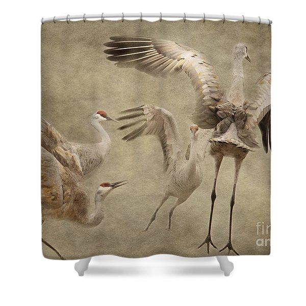 Dance Of The Sandhill Crane Shower Curtain