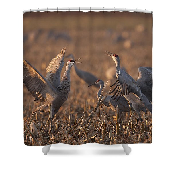 Dancing Sandhills Shower Curtain