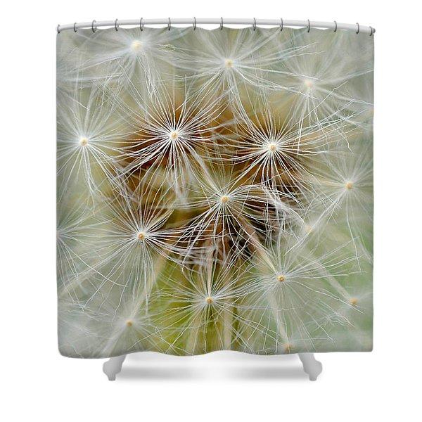 Dandelion Matrix Shower Curtain