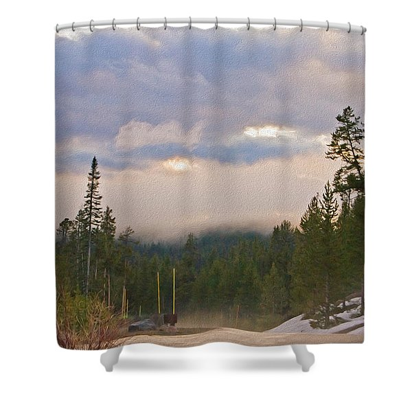 Dark Forest Morning Shower Curtain