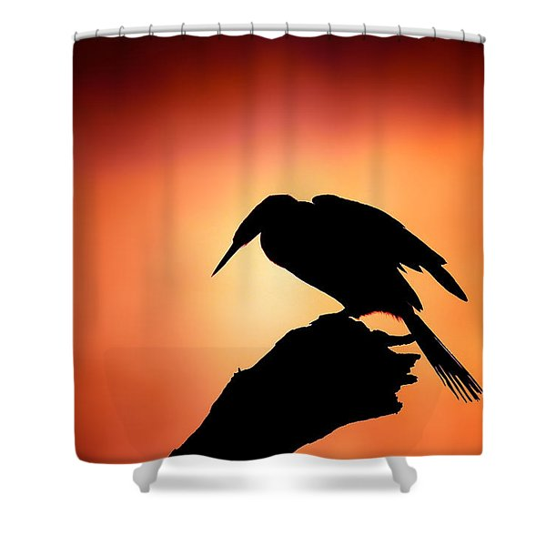 Darter Silhouette With Misty Sunrise Shower Curtain