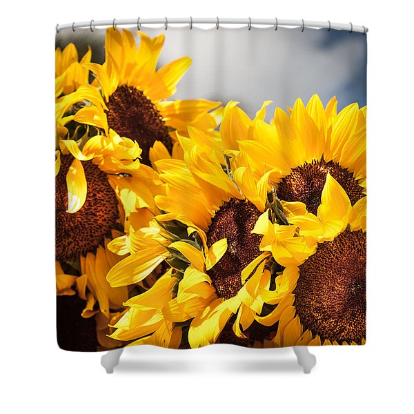 Daydreaming Gals Shower Curtain
