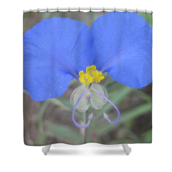 Dayflower Shower Curtain