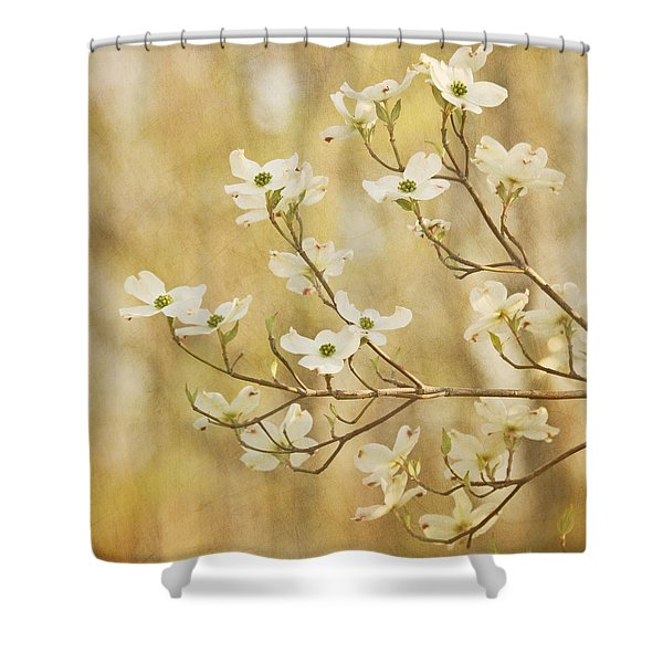 Days Of Dogwoods Shower Curtain