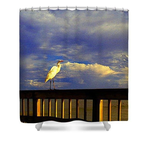 Daytona Beach Rail Bird Sun Glow Pier  Shower Curtain