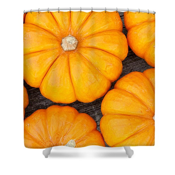 Decorative Pumpkins  Shower Curtain