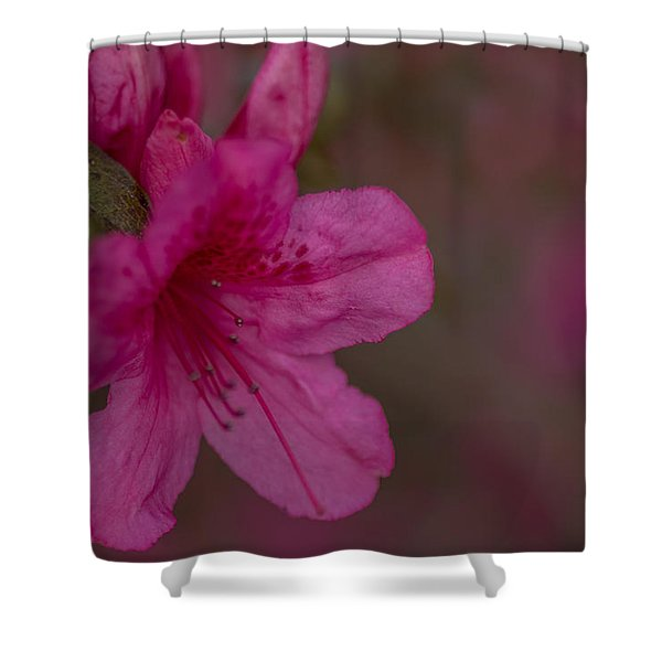 Delightful Azalea Shower Curtain