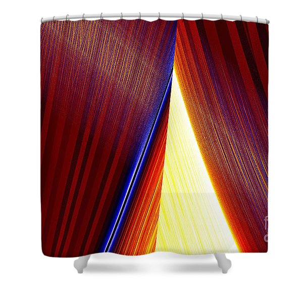 Delta Shower Curtain