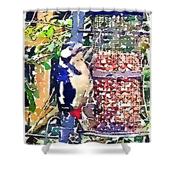 Dendrocopos Major 'great Spotted Woodpecker' Shower Curtain
