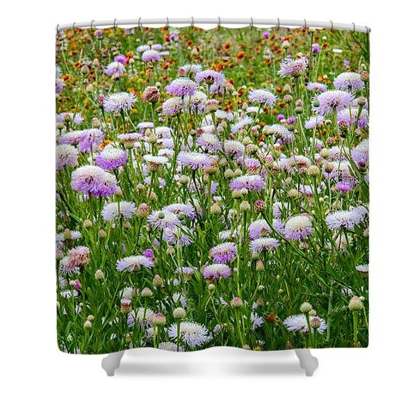 Dense Basket-flowers And Firewheels Shower Curtain