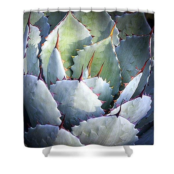 Desert Artichoke Agave Shower Curtain