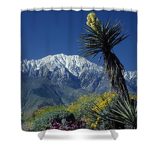 Desert Blooms Shower Curtain