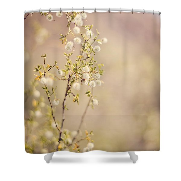 Desert Delicates Shower Curtain
