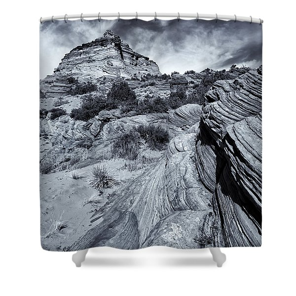 Desert Groove Shower Curtain