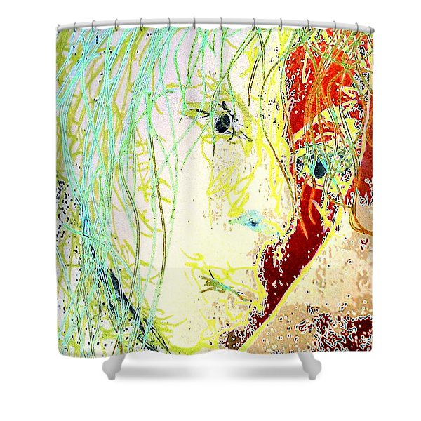Disillusionment Shower Curtain