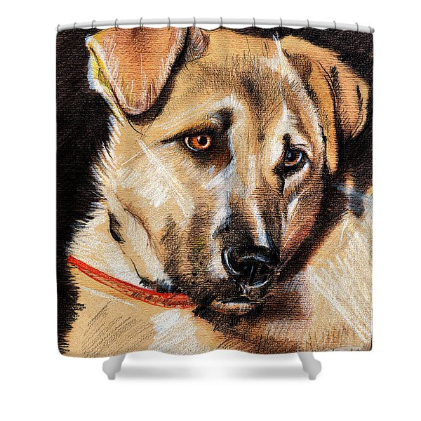 Dog Portrait Drawing Shower Curtain